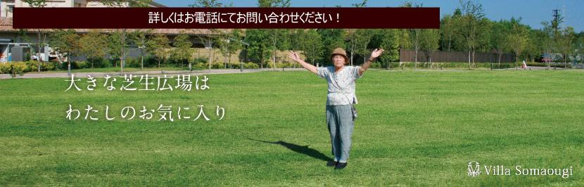 大きな芝生広場はわたしのお気に入り
