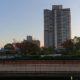 紅葉を見に行こうようIN阪神尼崎